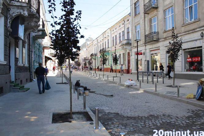На оновленій вулиці Чорновола висадили червонолисті клени та барбариси