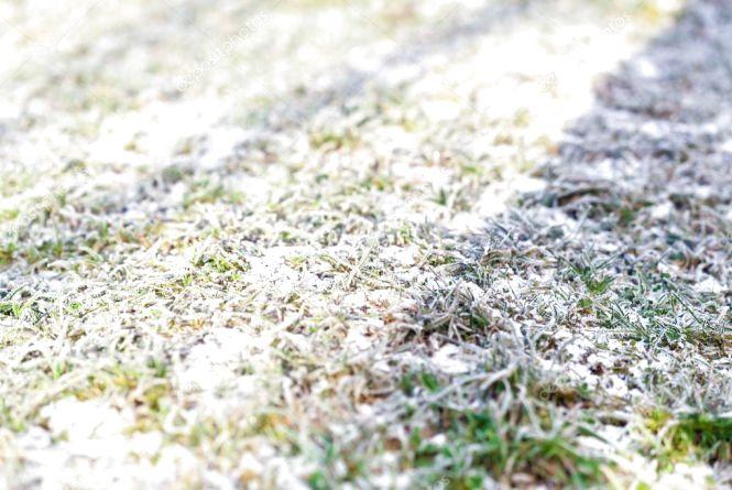 Легкий морозець і сніг. Погода у Тернополі на 19 листопада