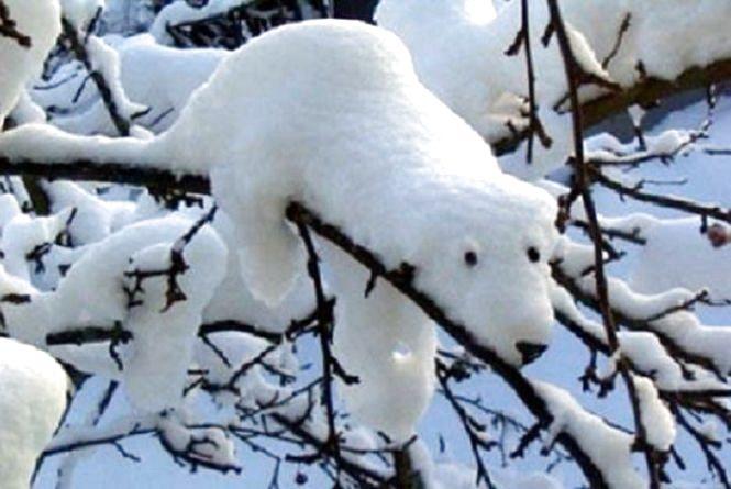 Погода у Тернополі на 26 листопада: сніг, +2