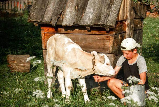 Фотограф з Тернопільщини перемогла у Всеукраїнському конкурсі