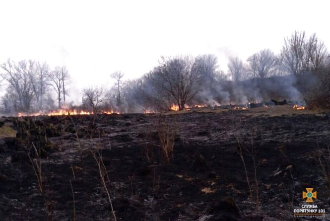 На Тернопільщині масово спалюють суху траву: горять гектари полів