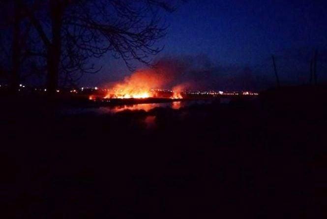 Нічна пожежа у полі поблизу Білої: згорів гектар території орнітологічного заказника