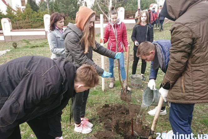 Більше 3000 дерев уже висадили у Тернополі в рамках акції «Тернопіль – найзеленіше місто»