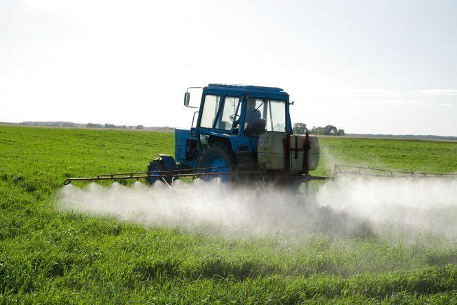 Сезон пестицидів: що робити, якщо поле обробляють хімікатами без попередження