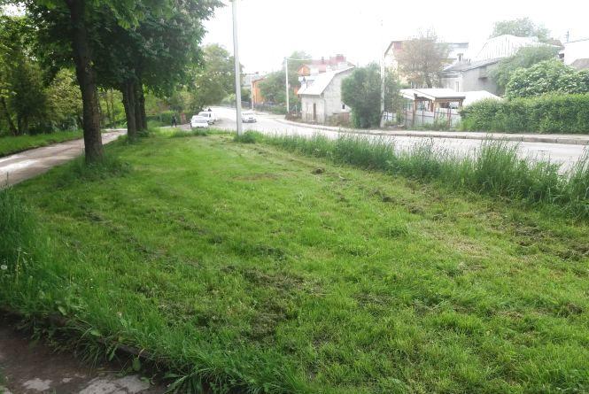 «Художню стрижку газону», яку тернополяни тролили у соцмережах, вже виправили