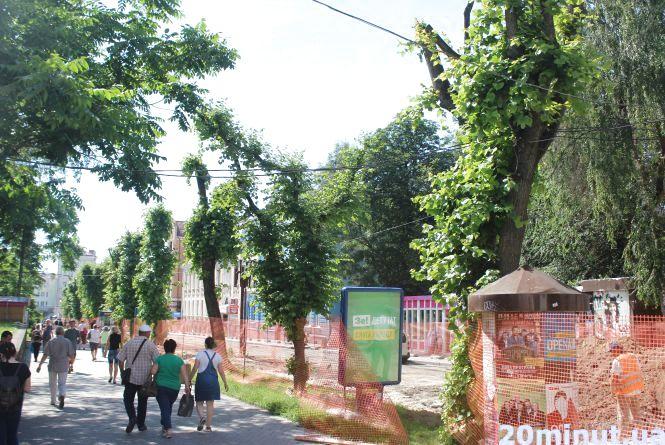 В Тернополі вирізають липи та каштани: чому це необхідно, та які дерева прийдуть на заміну