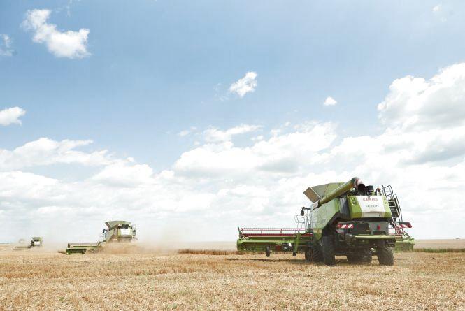 26 нових комбайнів CLAAS збирають врожай на полях «Контіненталу»  (новини компаній)