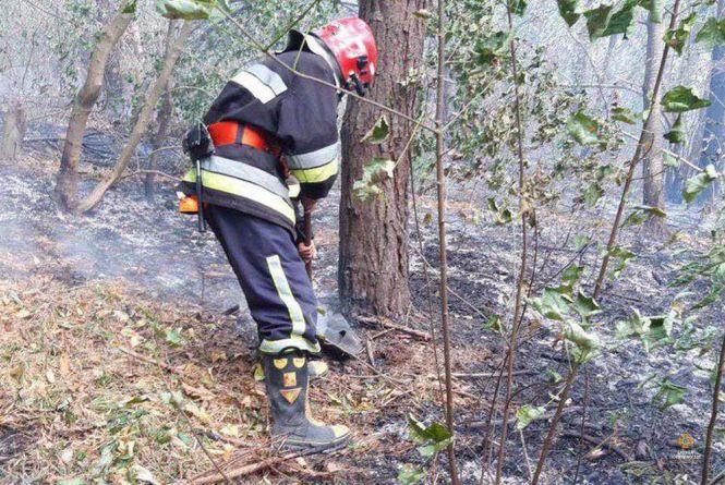 За минулу добу на Тернопільщині вогонь спалив майже 20 га території