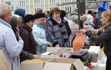 На ярмарку у Тернополі продають навіть домашню полуницю
