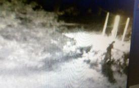 Вандалізм у Тернополі: біля дитячої лікарні жінка підняла ногу на фігурку Богородиці