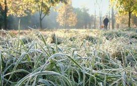Коли чекати перші заморозки: синоптики розповіли, якою буде осінь
